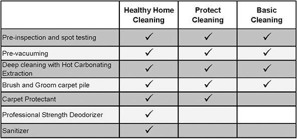 Chem-Dry of Charleston Vs. Traditional Steam Cleaning