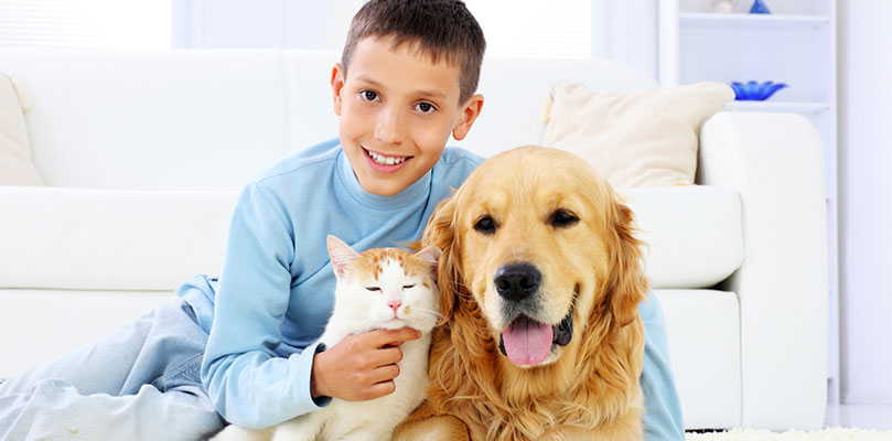Chem-Dry of Charleston Pet Safe Cleaning Products